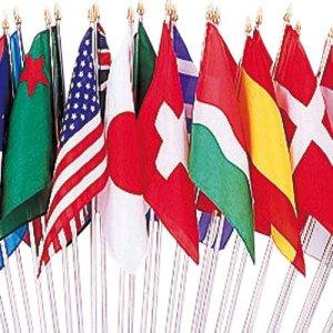 画像1: 万国旗25ヵ国 棒付シルク旗のみ