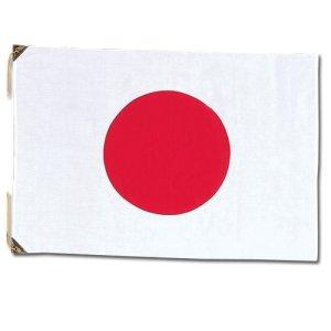 画像1: 例会用国旗 エクスラン